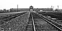 David Irving - On Holocaust.