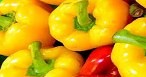 15 Manfaat Paprika yang Belum Anda Ketahui