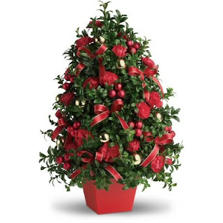 Order a Table Top Boxwood Christmas Tree