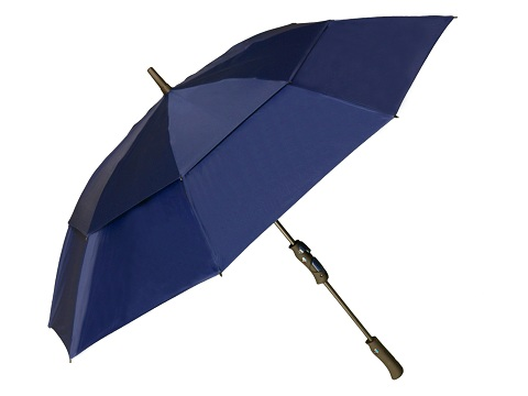 GRIP2 Umbrella