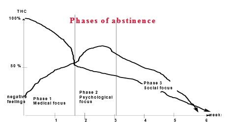 Phases of abstinence