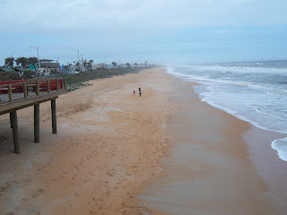 Picture of Flagler Beach From The Pier