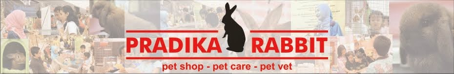 Pet Shop - Pet Care - Pet Vet | Pradika Rabbit