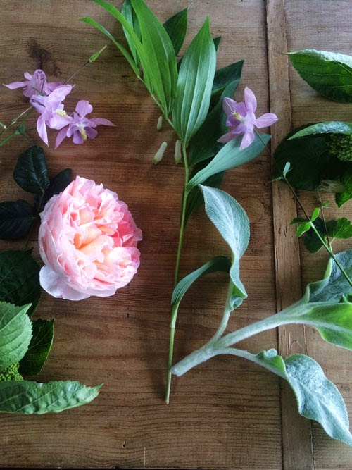 garden flowers via small acorns blog