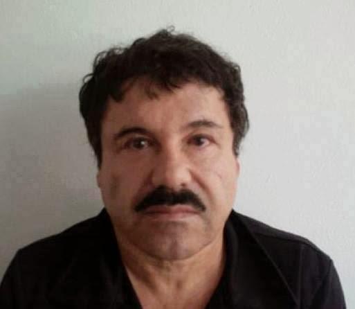 Falso Chapo