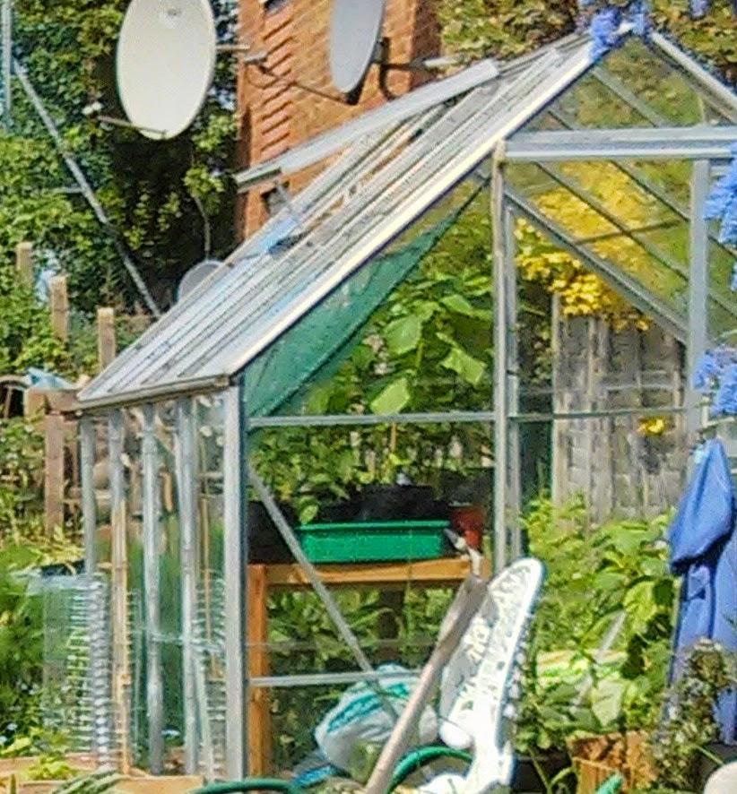 Rare the greenhouse project websockets pi