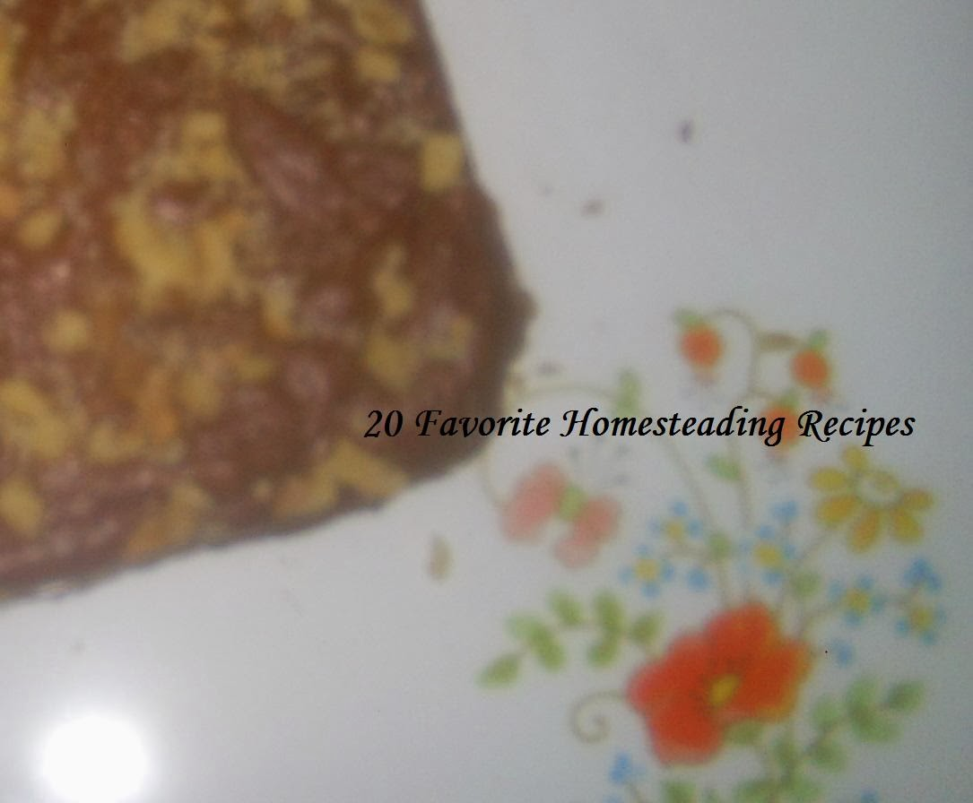 20 Favorite Homesteading Recipes