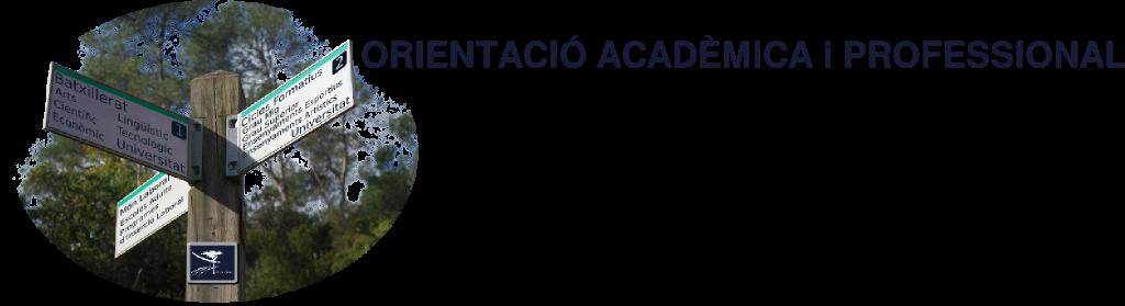 ORIENTACIÓ ACADÈMICA I PROFESSIONAL