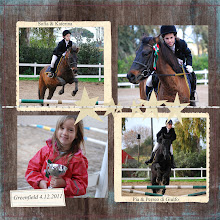 My Horse Blog