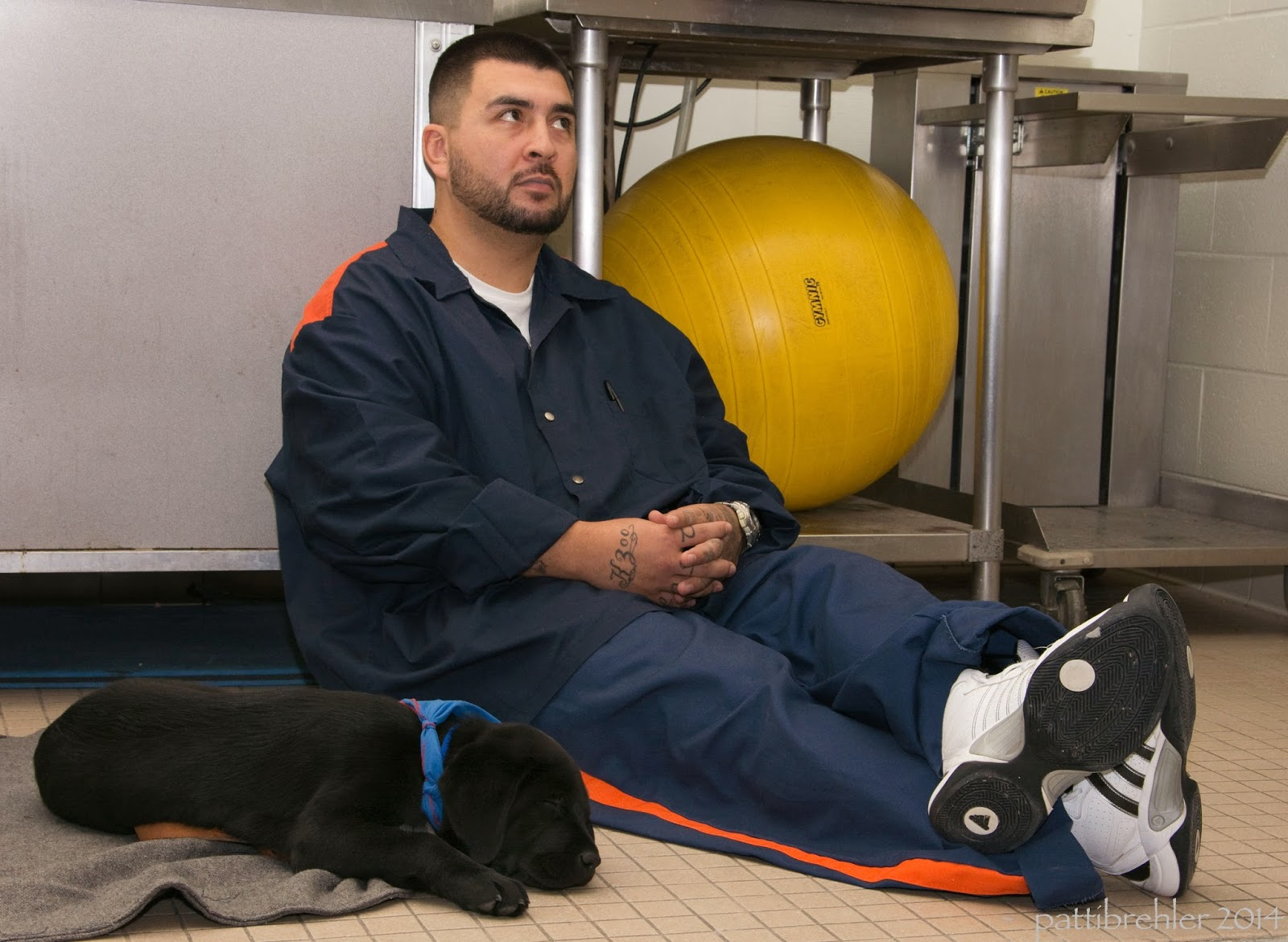 A man dressed in the prison blue uniform is sitting on the floor with his legs extended out in front of him. His hands are floded iin his lap. He is leaning against a metal cart which has a large yellow ball on it. A small black lab puppy is lying tot he left on a grey mat. He is wearing a blue bandana.