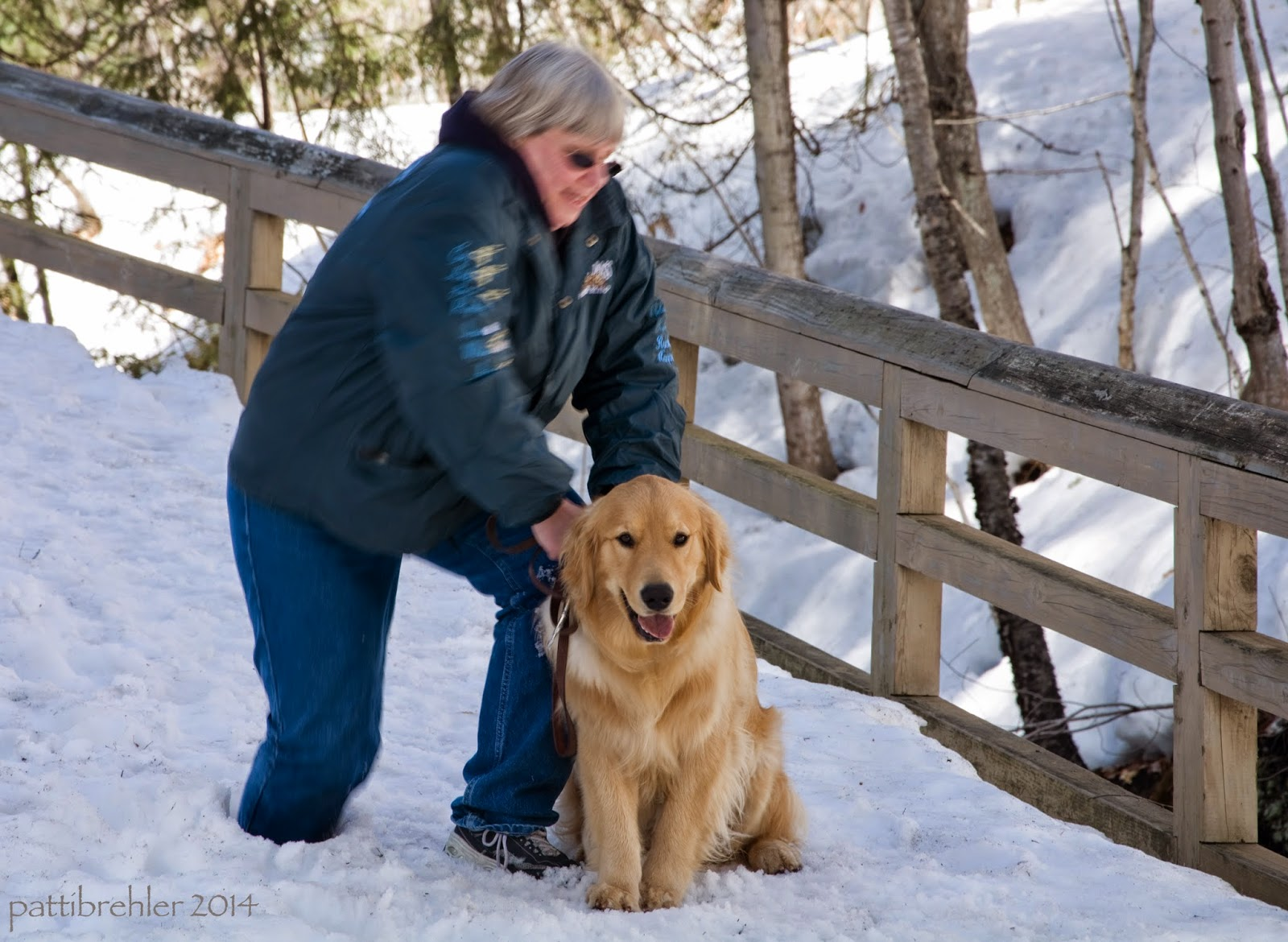 The same woman is bracing her hands on the golden retriever as she struggles to pull her right leg out of the snow. She is blurry, but the dog is in good focus.