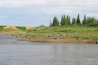 Чаще появляется по берегам реки лес, река Шапкина