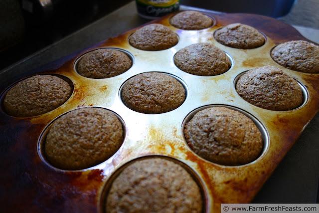 http://www.farmfreshfeasts.com/2013/04/frugal-refrigerator-bran-muffins.html