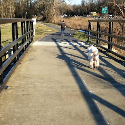 Carma running over the bridge