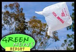 The Green Report