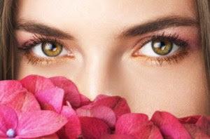 Tanaman Herbal Obat Mata Glaukoma Tradisional Alami Berkhasiat Paling Aman