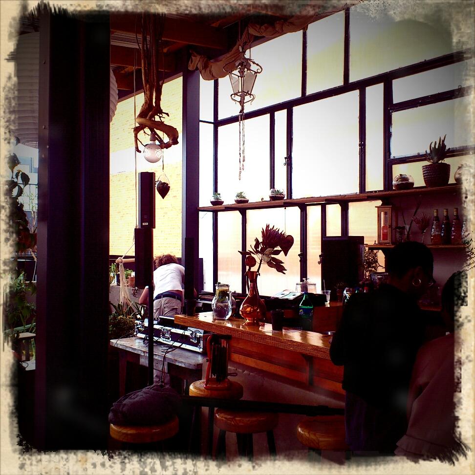 Undomestikated december 2012 for Living room maboneng