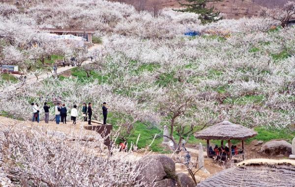 Maehwa village