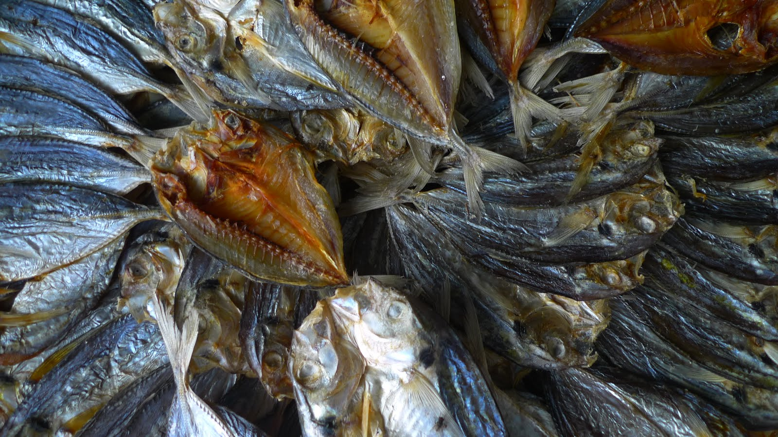 Inspired by nature life in the pilippines is new culture for Dried fish philippines