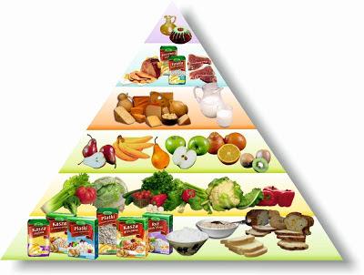 Piramida żywienia Lestello