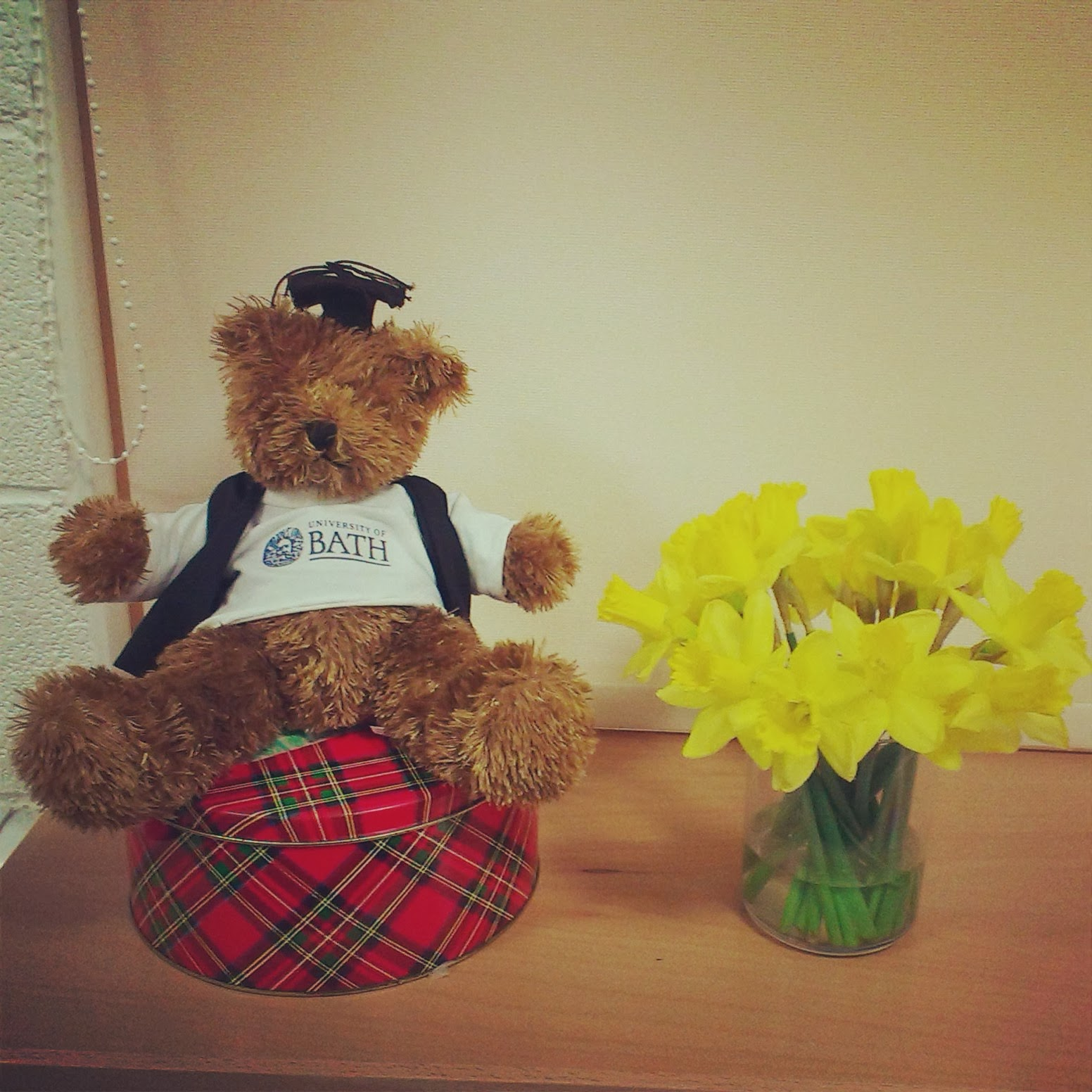 Daffodils in the office