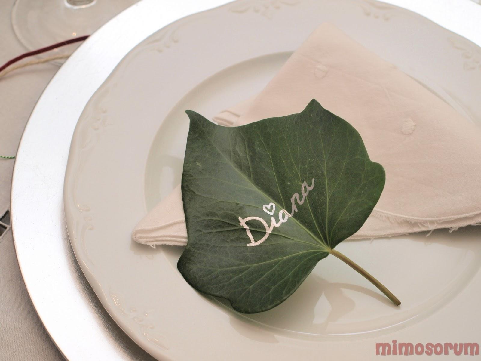 Decoración de la mesa con hiedra. MIMOSORUM
