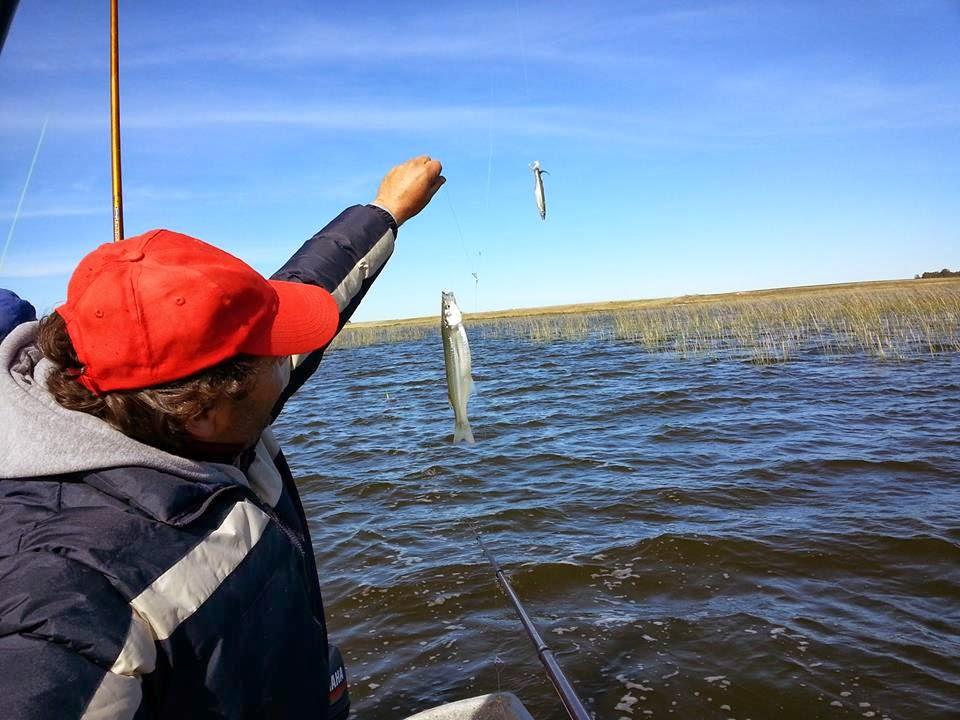 El restaurante la pesca rusa a la orilla del golfo finlandés