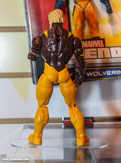 Hasbro 2013 Toy Fair Display Pictures - Wolverine Marvel Legends - Sabretooth