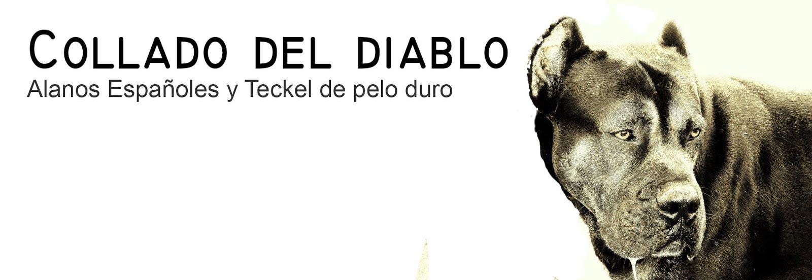 COLLADO DEL DIABLO