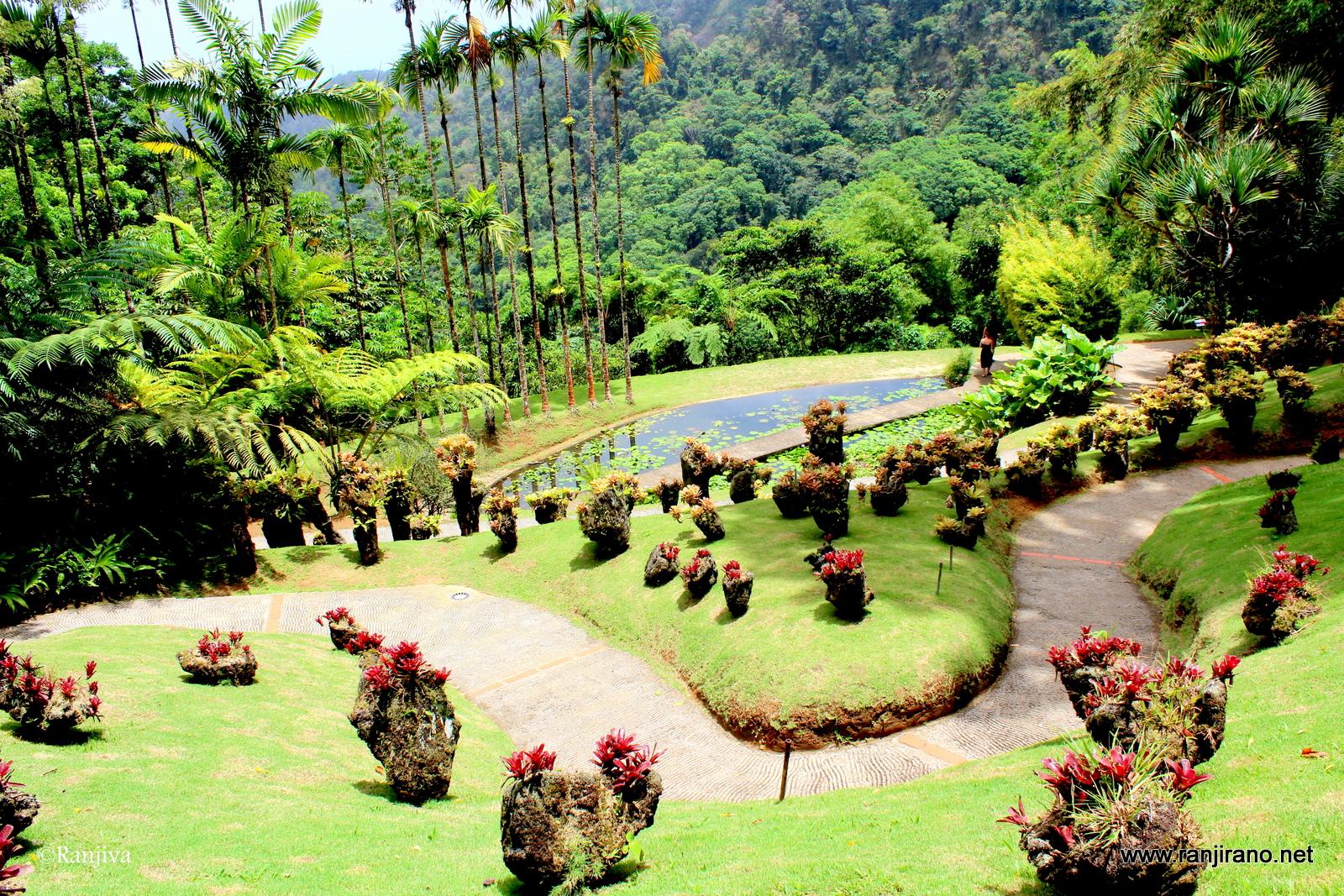 Un jardin extraordinaire le jardin de balata en for Le jardin de the