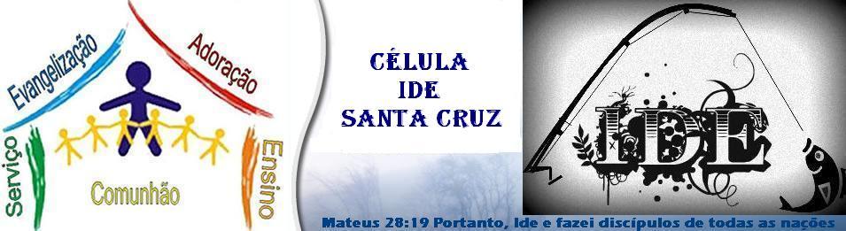 Célula IDE Santa Cruz