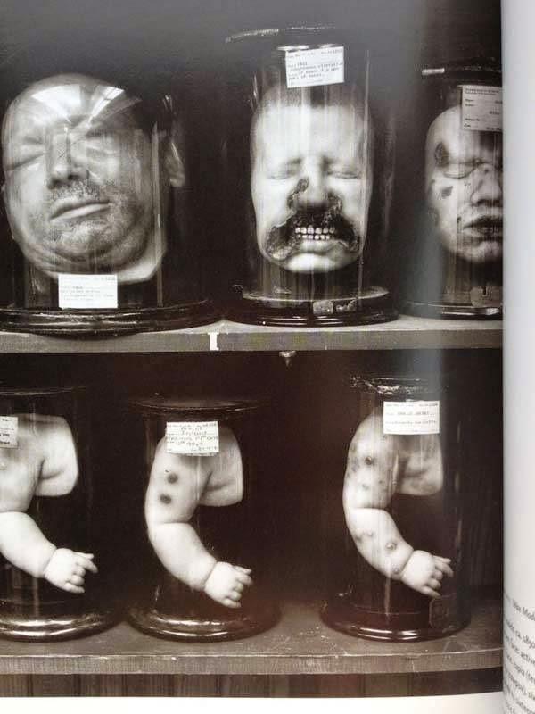 bukti-peninggalan-sejarah-paling-mengerikan-di-dunia-sejumlah-kepala-manusia