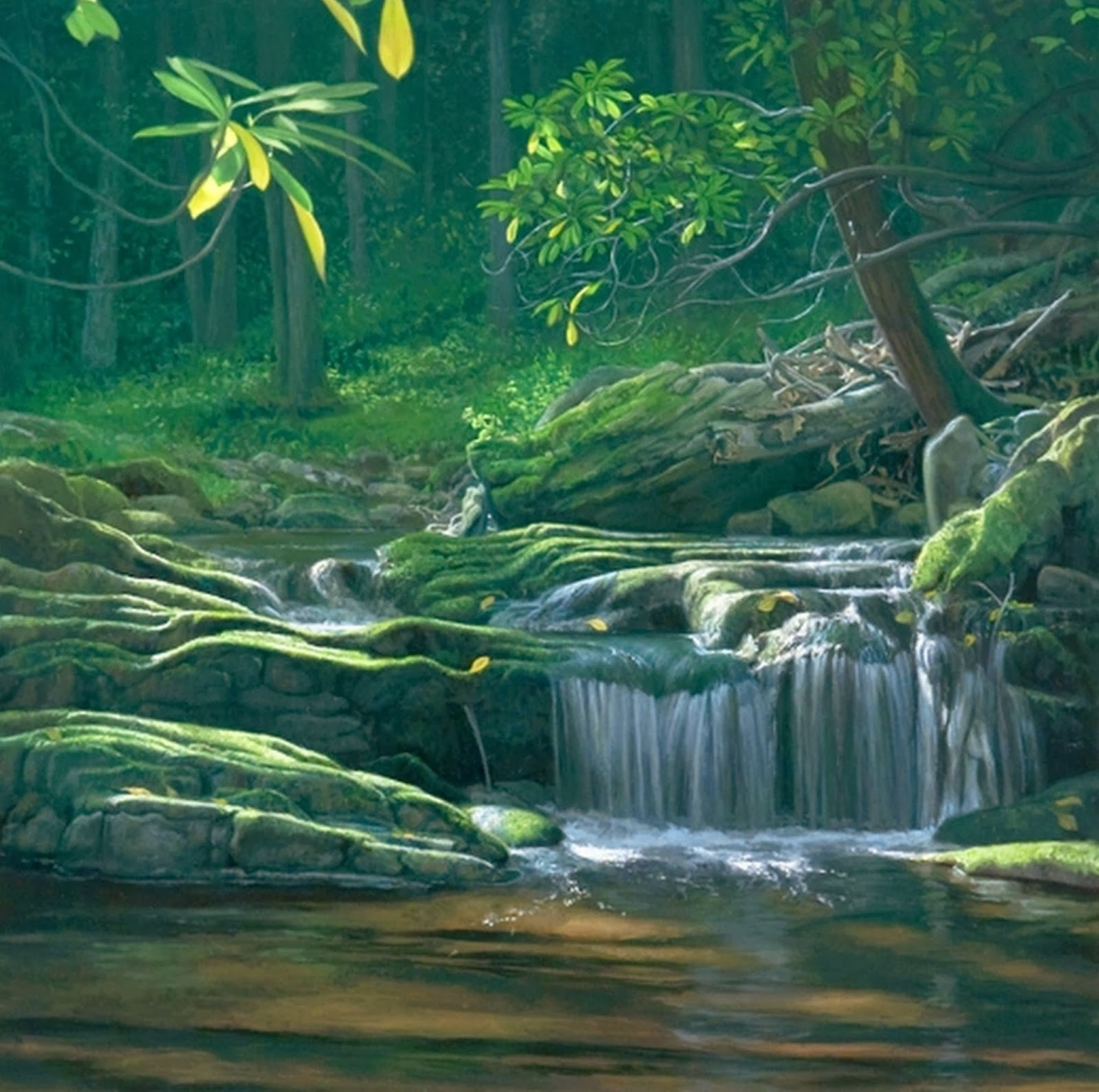 rios-paisajes