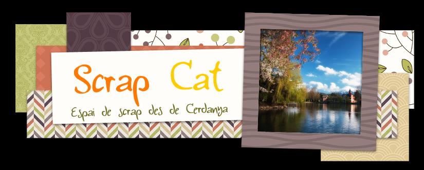 Scrap Cat Cerdanya