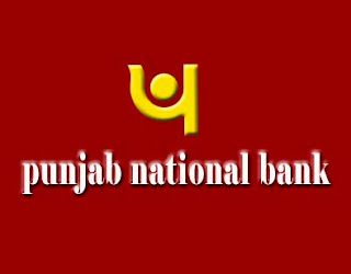 Punjab National Bank PNB microfinance