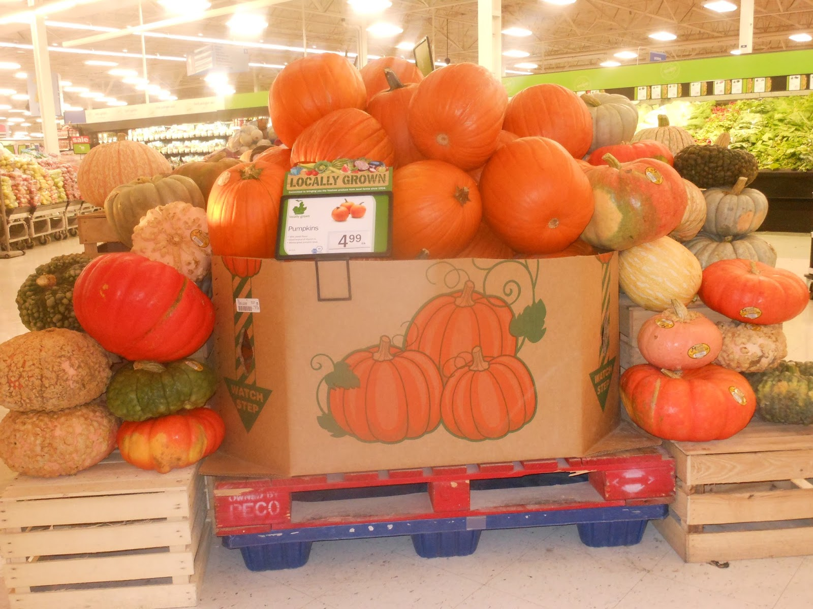 How to store pumpkins - This Week They Surprised Me And Finally Put Some Items In The Store My Favorite Thing Was Now In Abundance Pumpkins