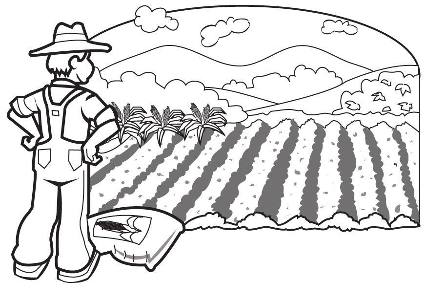 Dibujos Para Dibujar De Agricultura