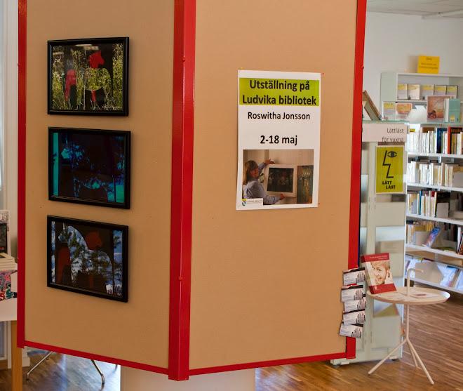 Utställning på Biblioteket 2013