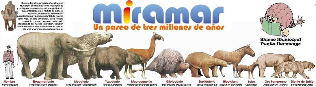 Miramar. Un paseo de tres millones de años.