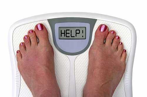 calorie chekup