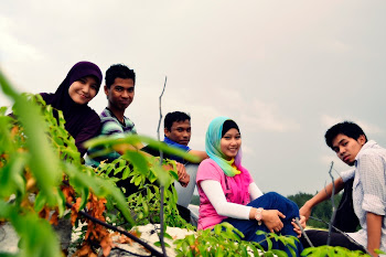 gile lens crew