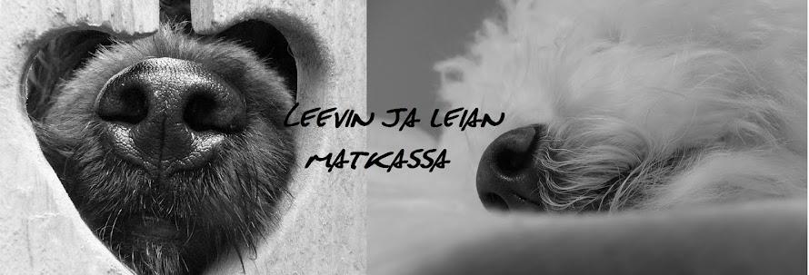 LEEVI ja LEIA