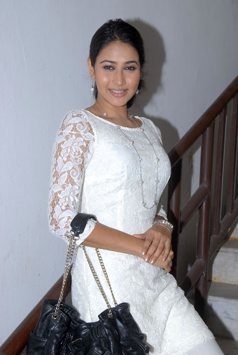 panchi bora at aakasame haddu successmeet, panchi bora actress pics