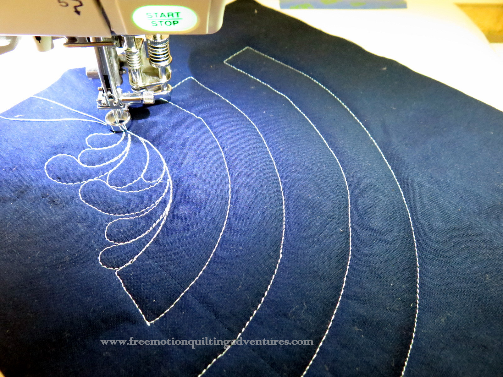 Amy\'s Free Motion Quilting Adventures: Free Motion Quilting Practice ...