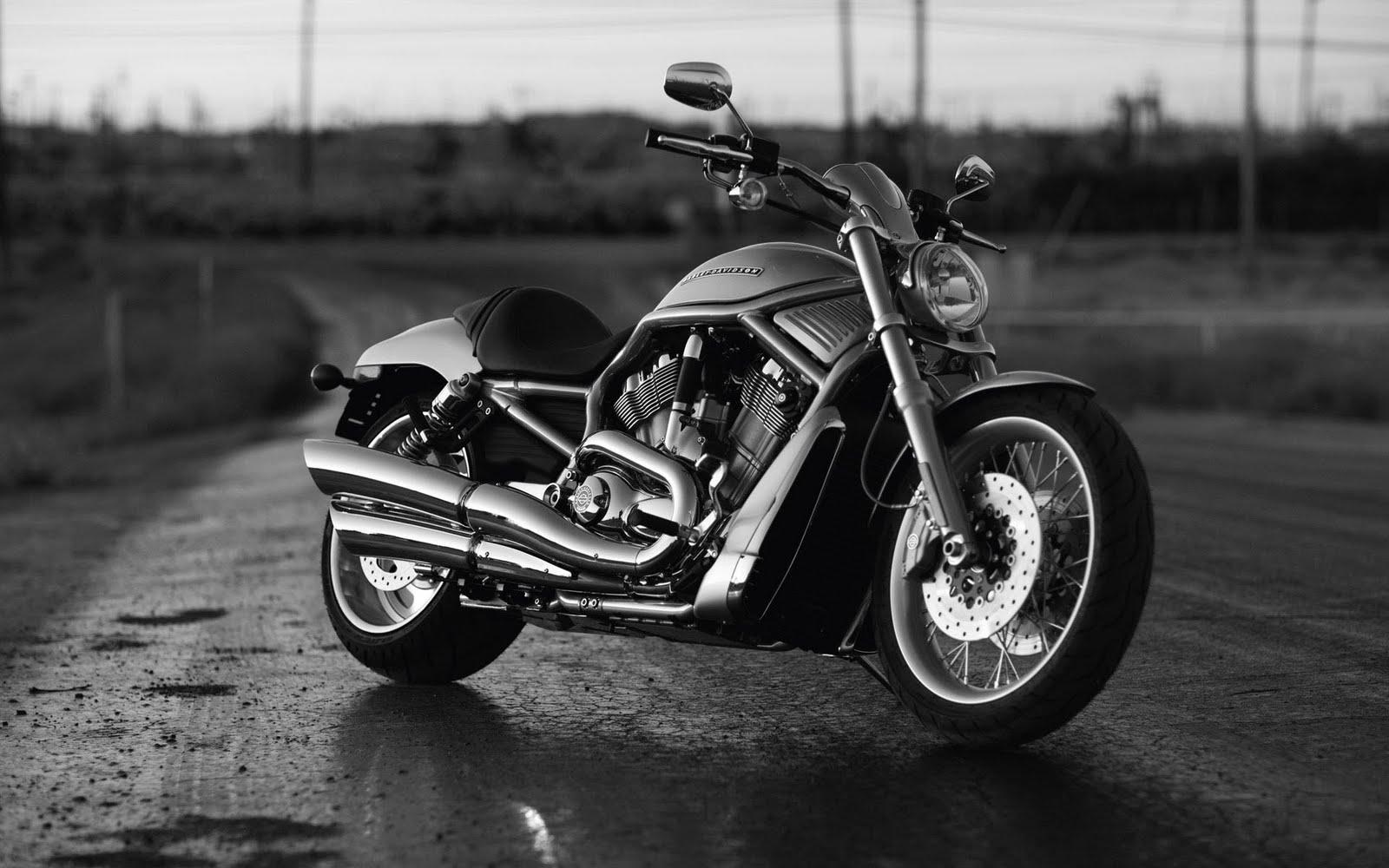 Bobber Cafe Racer Harley Davidson Hd Wallpaper 1080p: Harley Davidson Wallpaper