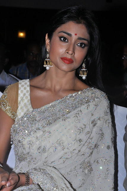 Actress Sherya Saran White Saree Phootos