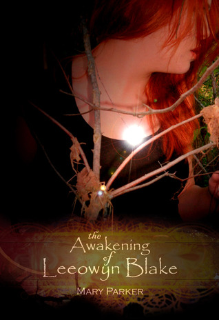 The Awakening of Leeowyn Blake book cover