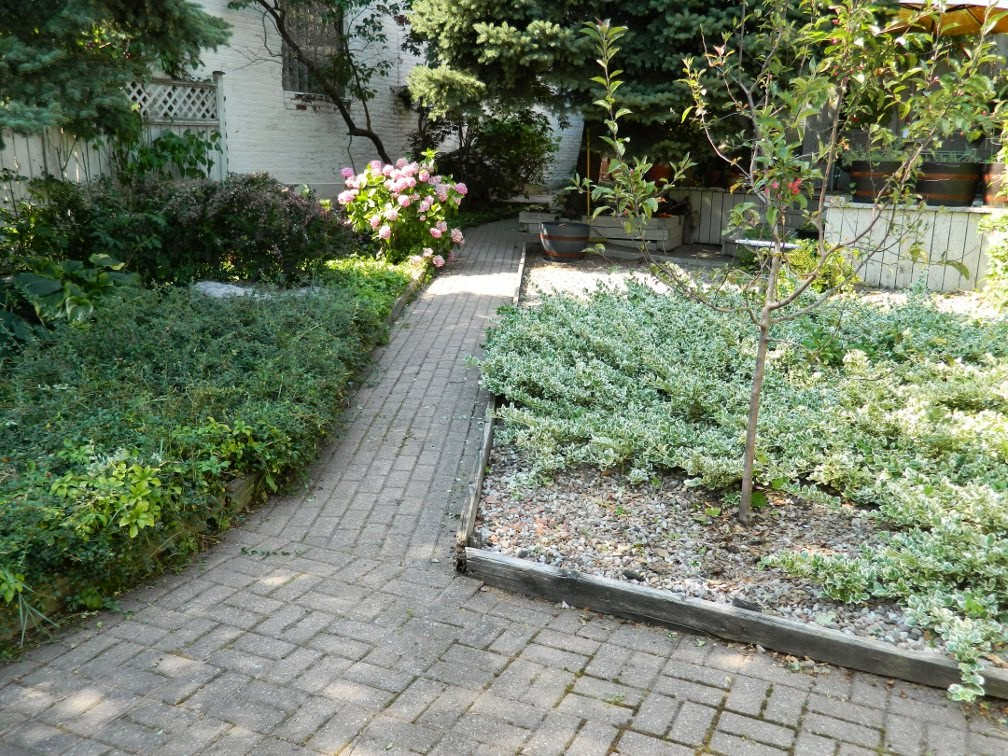 Toronto garden cleanup Cabbagetown backyard path after Paul Jung Gardening Services