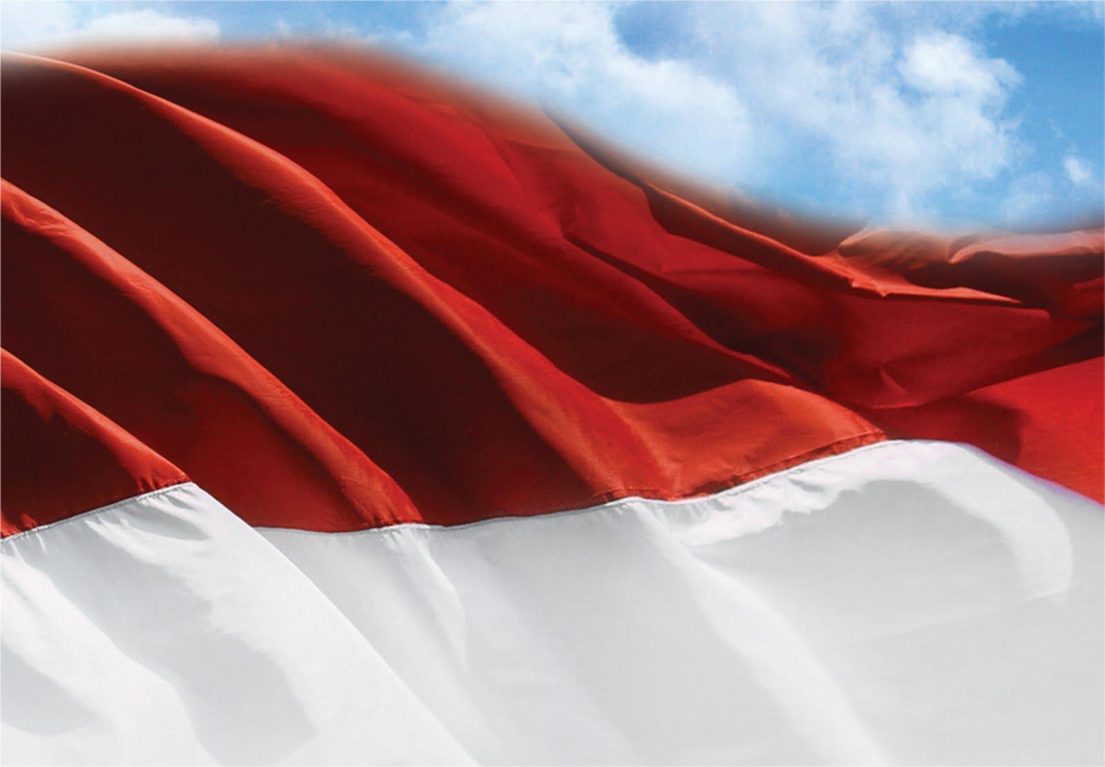 Biografi 7 Pemain Sepakbola Top Berdarah Indonesia