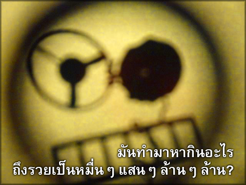 มันทำมาหากินอะไร ถึงรวยเป็นหมื่นๆ แสนๆ ล้านๆ ล้าน?